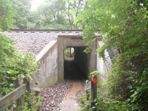 Cut under the train tracks via this (apparently) really old tunnel and get up close and personal with the Meramec.
